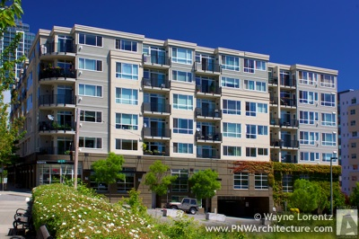 Bellevue Abella in Bellevue, Washington